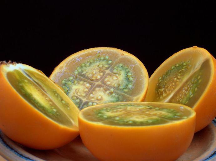 Solanum_quitoense_1